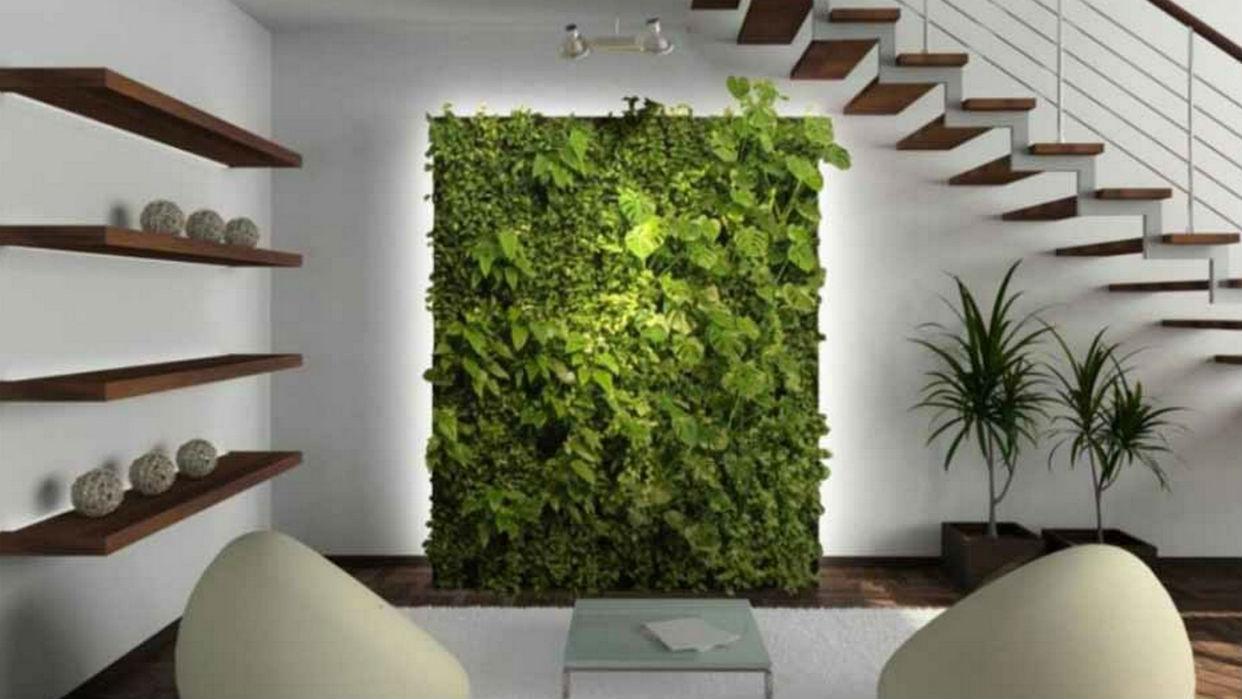 Encuadrar plantas genera una resolución muy llamativa
